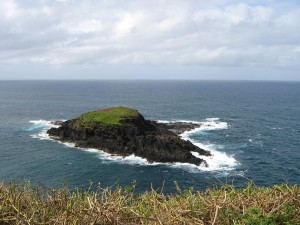 Moku'ae'ae Island, off Kilauea Lighthouse, Kauai Hawaii