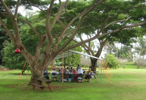 Kauai Women Artists holding art classes under the trees