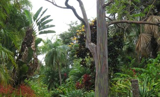 Entry to the National Tropical Botanical Gardens, Poipu